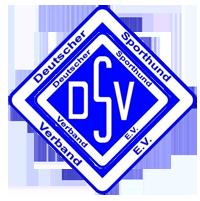 dsv_logo